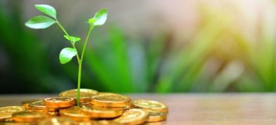 روش های سرمایه گذاری در صندوق های شرکت سبدگردان پاداش سرمایه